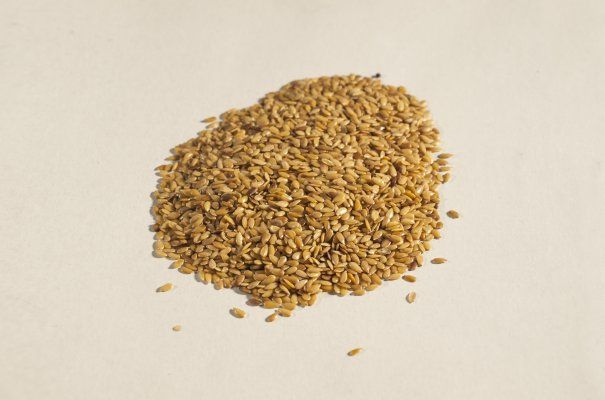 Lněné semínko zlaté