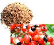 Guarana plod mletý 50g